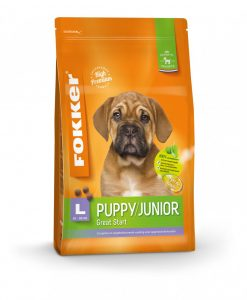 orange-puppy-junior-l