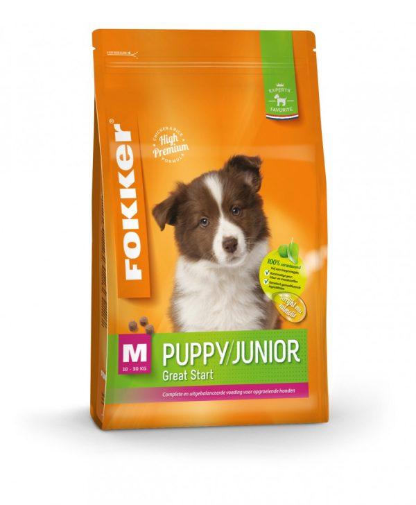 orange-puppy-junior-m