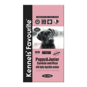 Puppy-Junior-Salmon-Rice-kennels-favorite