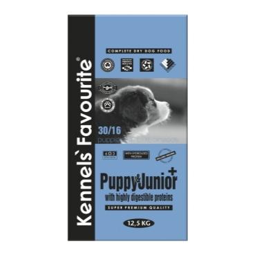puppy-junior-large-verylarge-breeds-kennels-favorite