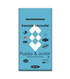 puppy-junior-kennelsfavorite
